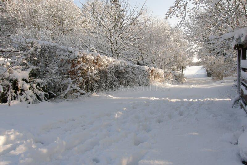 Feldweg im Schnee stockfotos