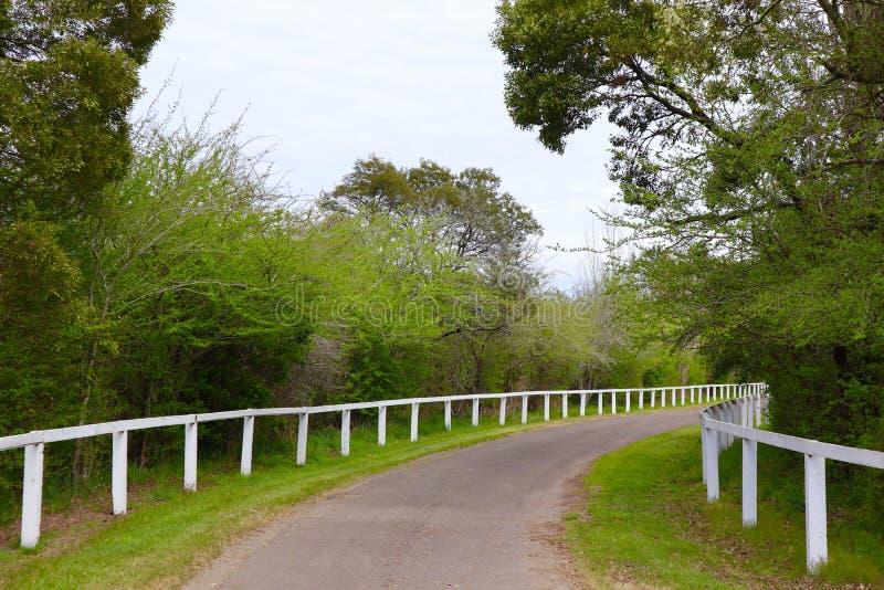 Feldweg mit dem Weiß-Fechten und grünem Gras lizenzfreie stockbilder