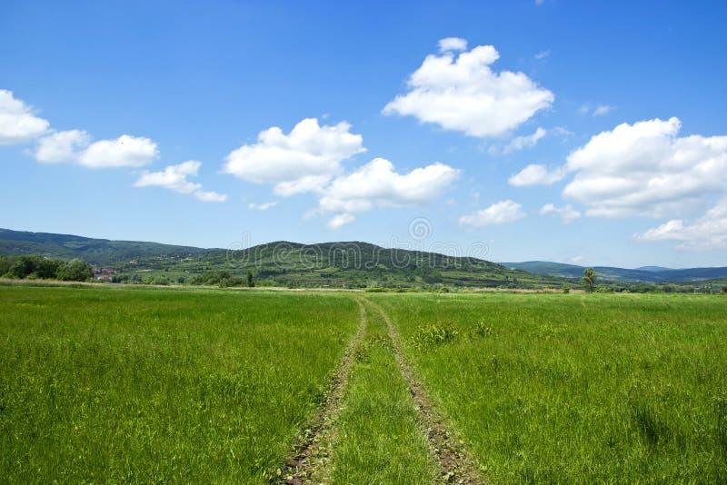 Feldweg zum Berg lizenzfreies stockfoto
