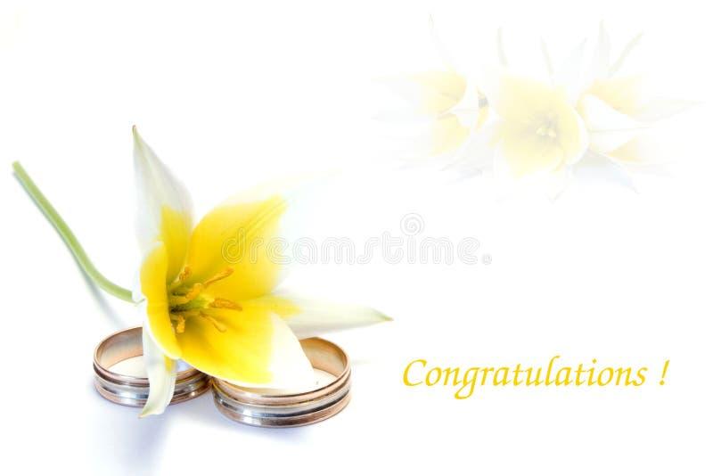 Felicitações do casamento fotografia de stock royalty free