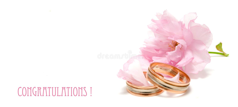 Felicitações do casamento foto de stock royalty free