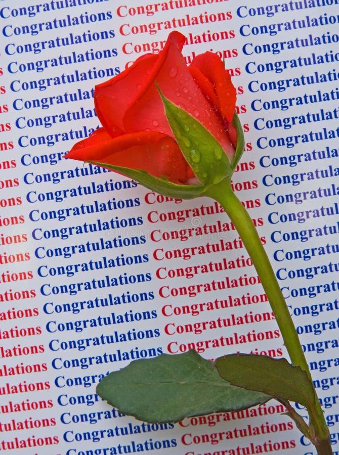 Felicitações em seu sucesso. fotos de stock
