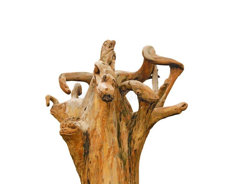 Felik drake, monster som göras från rota av trädet royaltyfri bild