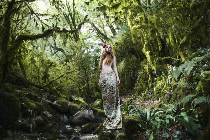 felik kvinna för skogståenderomantiker arkivfoton
