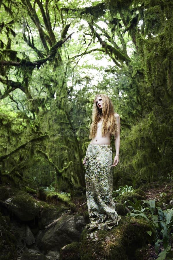 felik kvinna för skogståenderomantiker royaltyfri fotografi