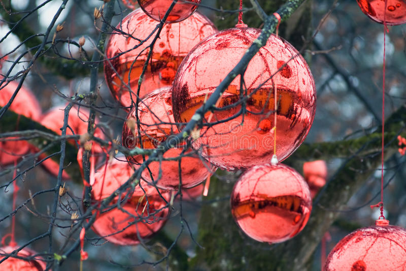 Felika gåvor på julhelgdagsaftonen i Österrike arkivbild