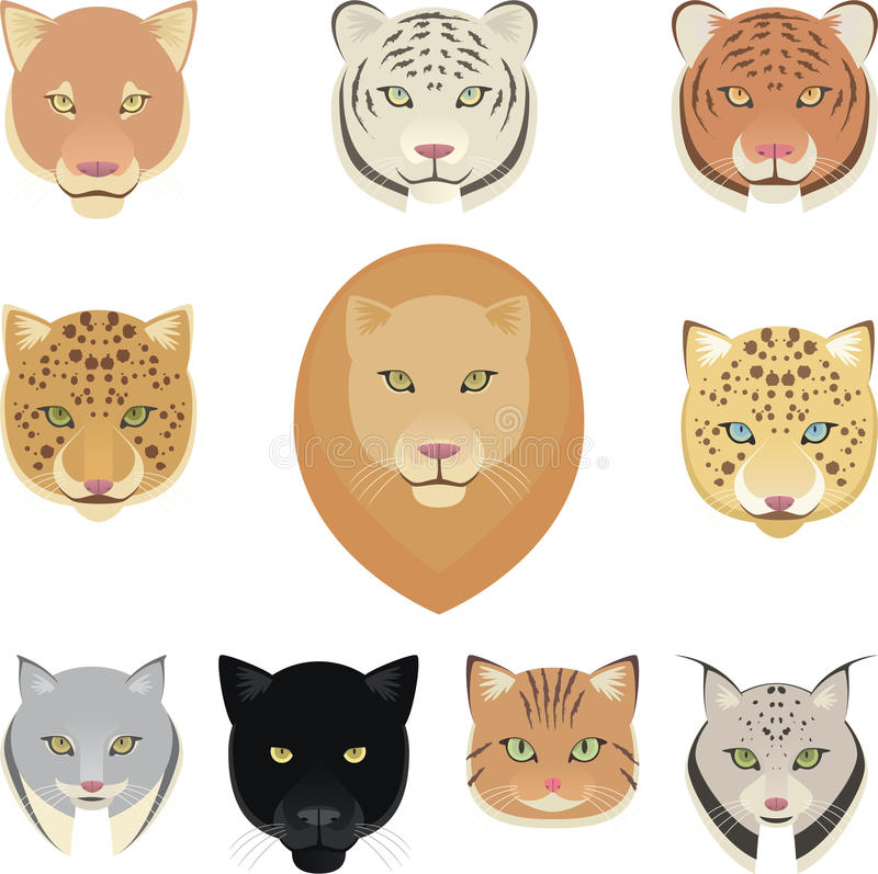 Free Felines Leopard Panther Lion Tiger Cougar Jaguar Heads Collection Stock Photography - 46721632