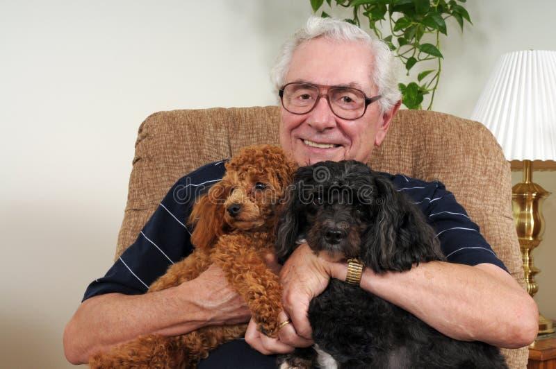 Feliz con sus perritos imagenes de archivo