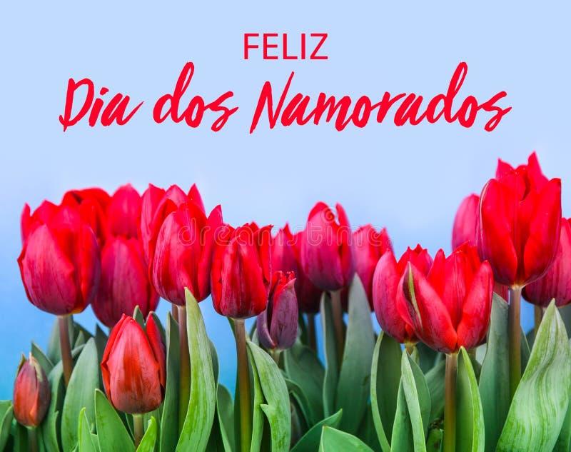 Feliz Dia dos Namorados文本用葡萄牙语:愉快的Valentine's开花与绿色茎的天和红色郁金香 免版税库存图片
