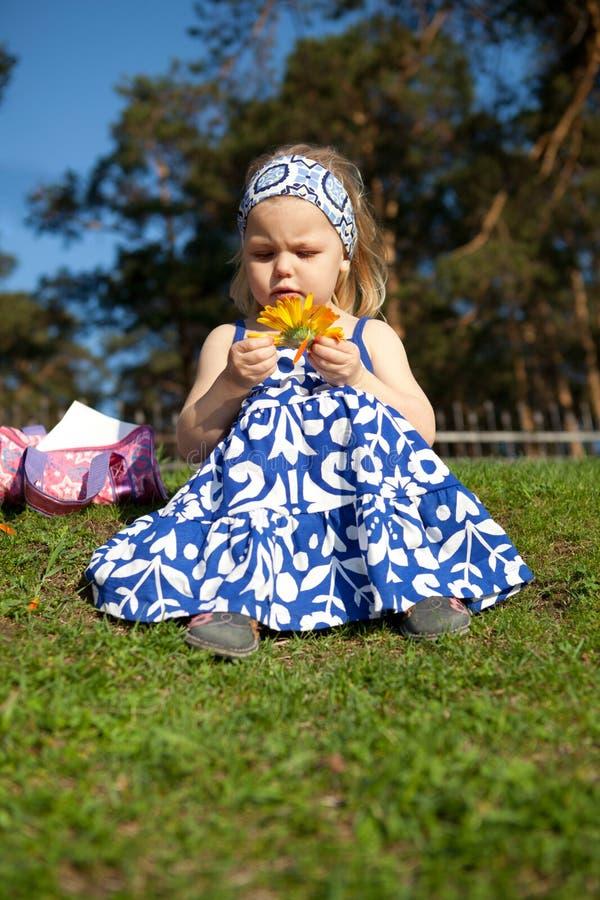 Feliz muchacha hermosa que se sienta en hierba verde foto de archivo libre de regalías