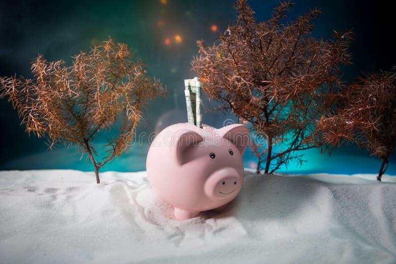 Feliz Natal e ano novo feliz Ano novo chinês do porco, símbolo 2019 para o cartão de cumprimentos Foco seletivo macio E foto de stock royalty free