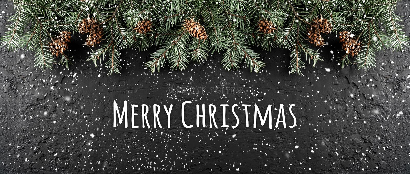 Feliz Natal tipográfico no fundo escuro do feriado com quadro de ramos do abeto, cones do pinho fotos de stock royalty free