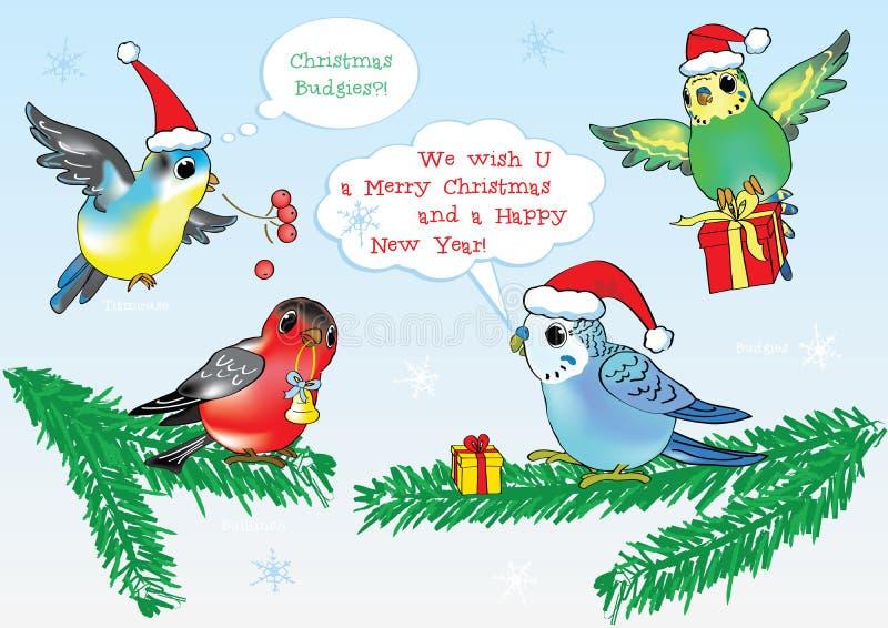 ¡Feliz Navidad de pájaros del estilo de la historieta del vector! fotos de archivo