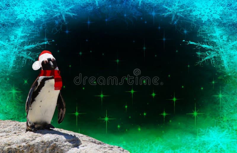 Feliz Navidad un pingüino divertido vestido en un capo del mantón y de Papá Noel aislado en un fondo congelado con las escamas y  fotografía de archivo libre de regalías