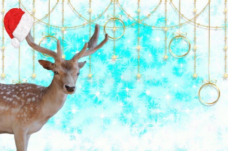 Feliz Navidad un reno con un capo de Papá Noel en sus astas en un fondo azul hermoso con las estrellas y el cr de la nieve imágenes de archivo libres de regalías