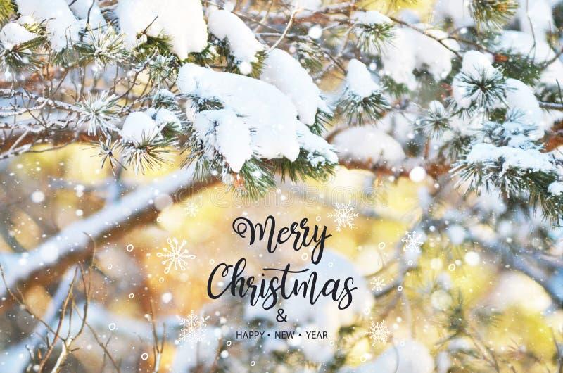Feliz Navidad y Feliz Año Nuevo foto de archivo