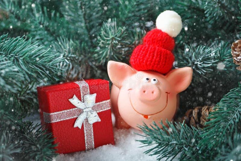 Feliz Navidad y Feliz Año Nuevo Cerdo del juguete en las ramas de la picea Fondo con el espacio de la copia Foco selectivo foto de archivo libre de regalías