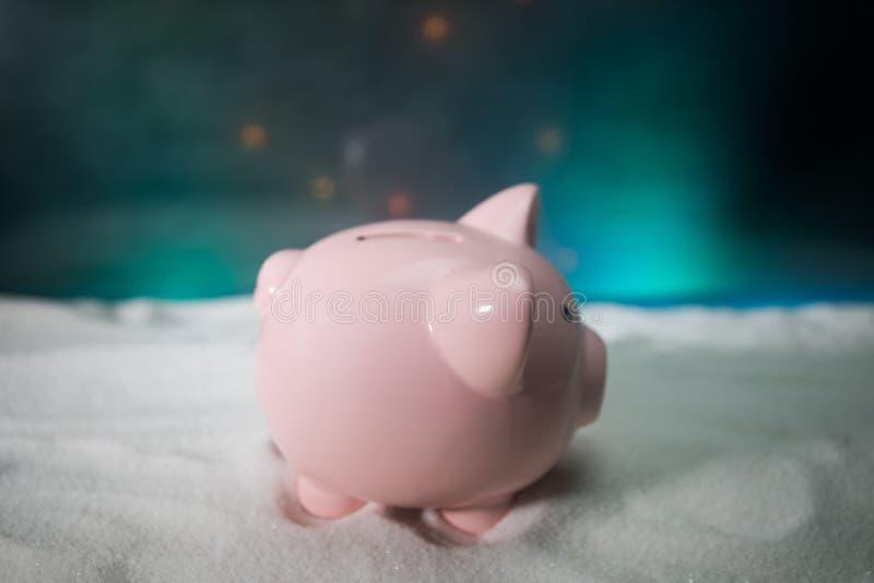 Feliz Navidad y Feliz Año Nuevo Año Nuevo chino del cerdo, símbolo 2019 para la tarjeta de felicitaciones Foco selectivo suave Ce imagen de archivo