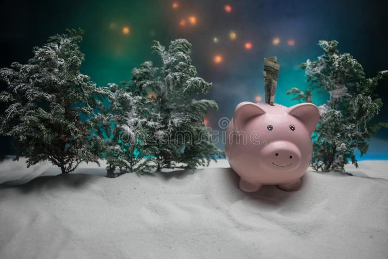 Feliz Navidad y Feliz Año Nuevo Año Nuevo chino del cerdo, símbolo 2019 para la tarjeta de felicitaciones Foco selectivo suave Ce foto de archivo