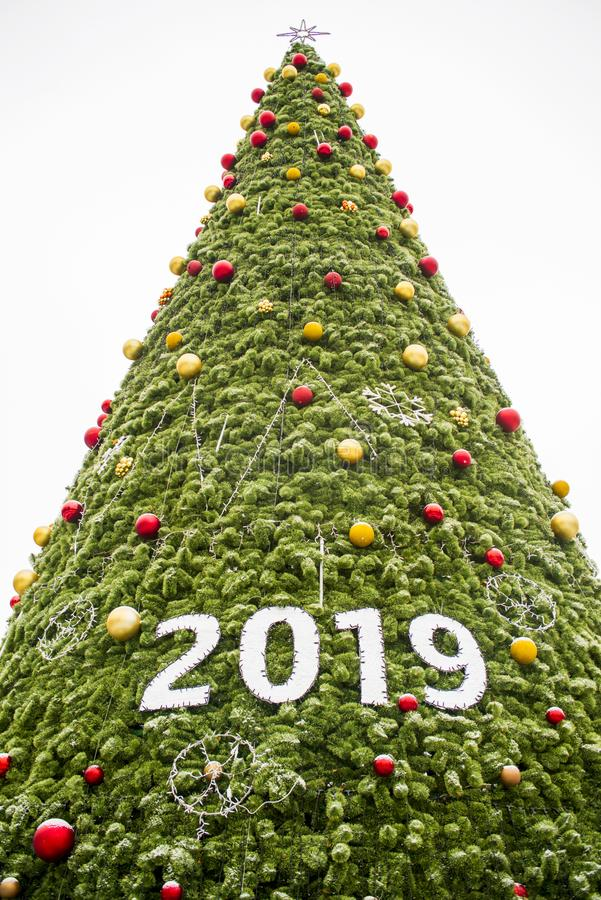 Feliz Navidad 2019 y Feliz Año Nuevo con el árbol de navidad Feliz Año Nuevo 2019 en un árbol de navidad grande foto de archivo