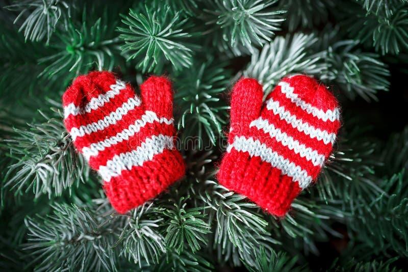 Feliz Navidad y Feliz Año Nuevo Pequeñas manoplas hechas punto en el árbol de navidad fotografía de archivo libre de regalías