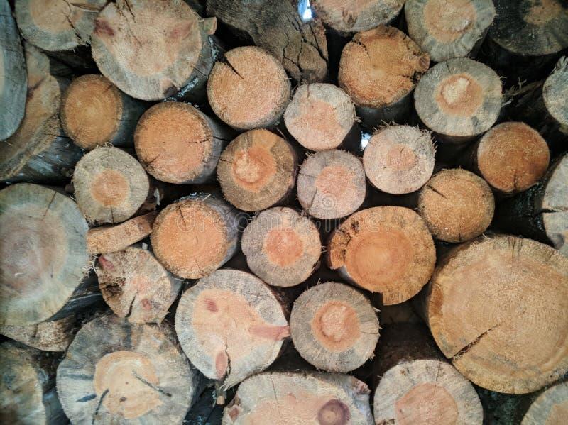 Felling of a tree, log, firewood. Lumberjack. Background of wood. Sawn pine. Natural tree bark. Background of hewed smooth wooden. Felling of a tree, log stock photography