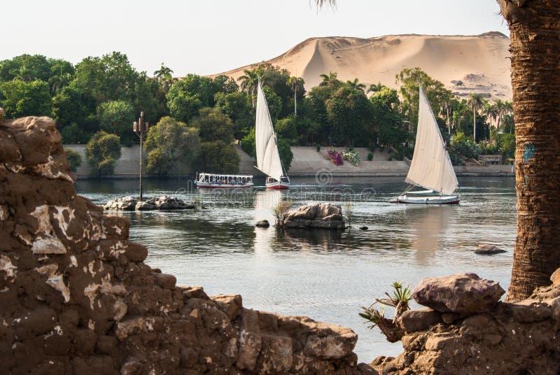Felluca på Nilen, Egypten royaltyfri foto