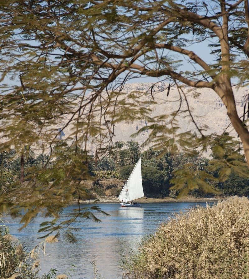 Felluca traditionnel de navigation sur le Nil photographie stock libre de droits