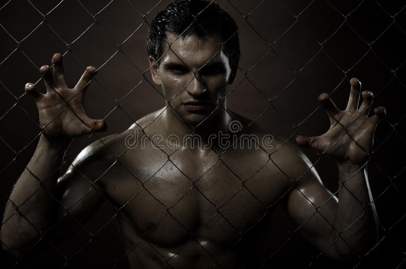 Download Felon man stock photo. Image of convict, brutal, fence - 22101810
