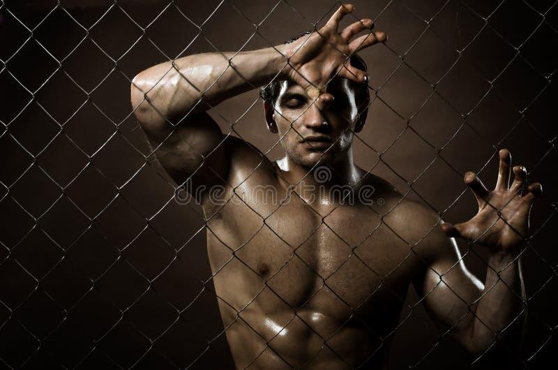 Felon man royalty free stock photo