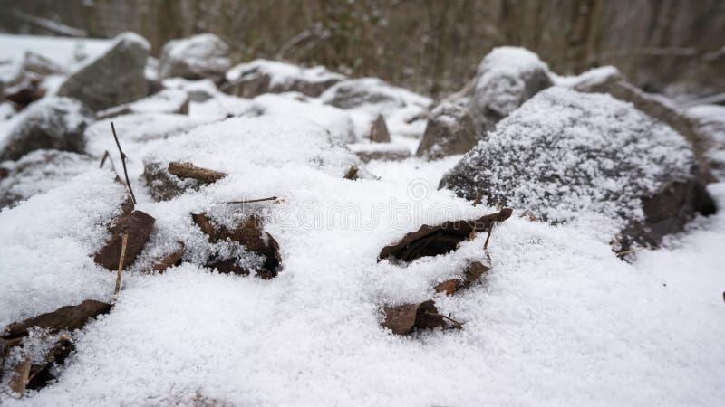 Felsen abgedeckt im Schnee lizenzfreie stockbilder