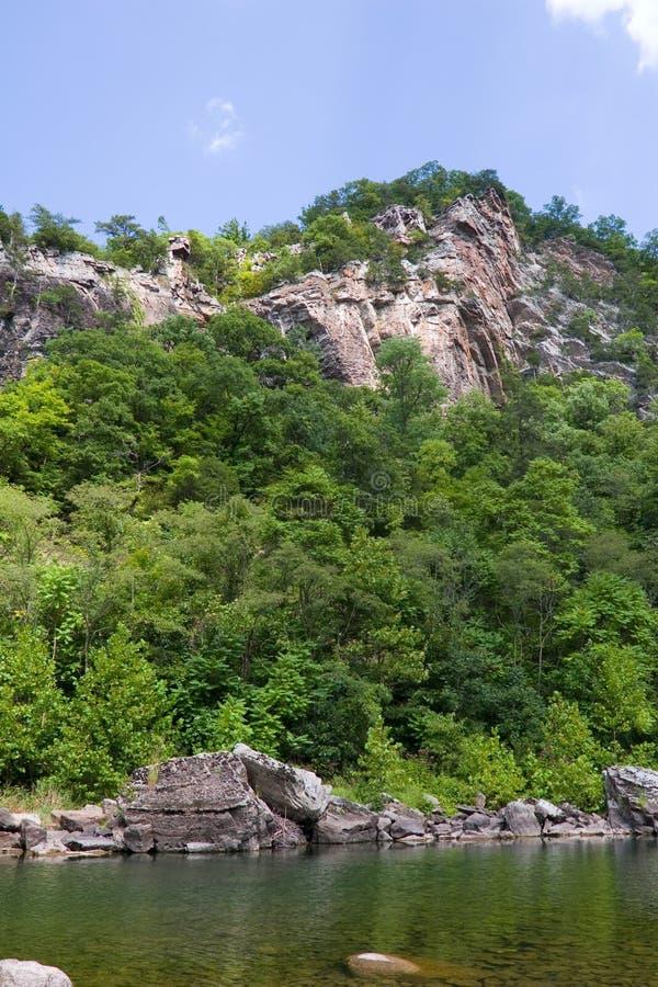 Felsen, Bäume, Fluss lizenzfreie stockbilder