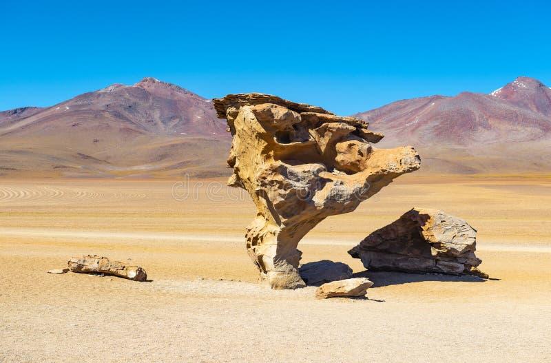 Felsen-Baum in der Siloli-Wüste, Bolivien stockfoto
