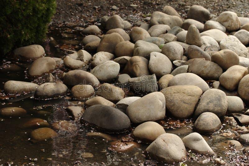 Felsen entlang Wasser stockbild