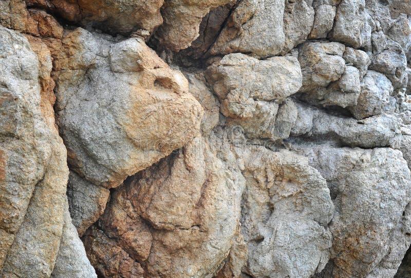 Felsen in Form von Hunden stockfoto