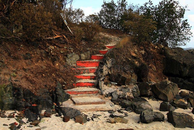 Felsen, gemalte Schritte und Büsche auf dem einsamen Strand in BVI lizenzfreie stockfotografie