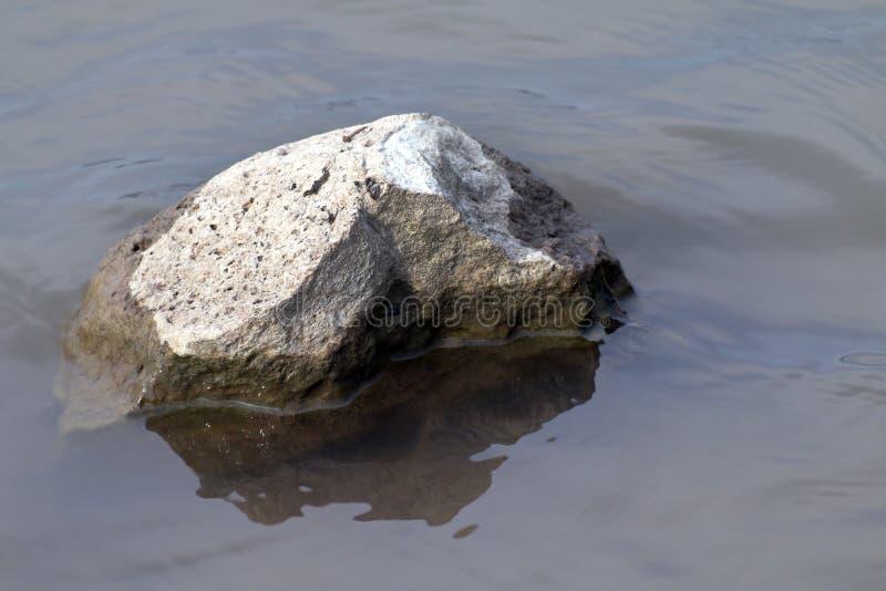 Felsen im Wasser seicht, großer Stein in der Dürre, Stein über Konzept der globalen Erwärmung des Oberflächenwassers lizenzfreie stockfotos