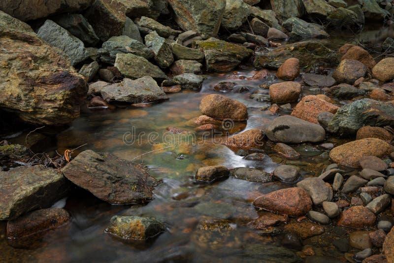 Felsen in Stream im Acadia Nationalpark lizenzfreies stockfoto