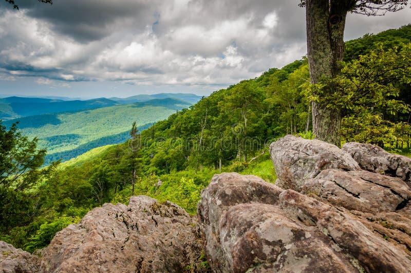 Felsen und Bäume bei Jewell Hollow Overlook in Shenandoah-Staatsangehörigem lizenzfreies stockfoto
