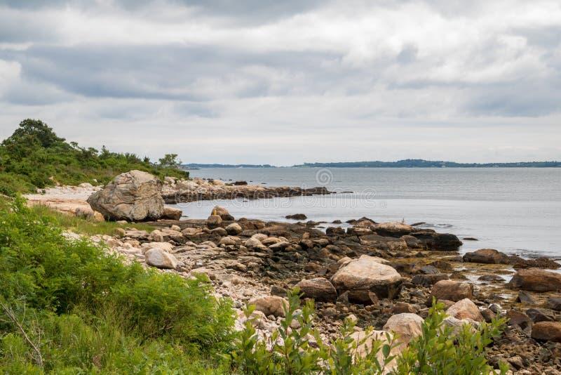 Felsen und Meerespflanze auf der Küste stockbild