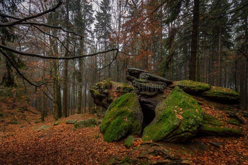 Felsen voll des Mooses im bunten Herbstwald nahe Zkamenely-zamek stockbilder