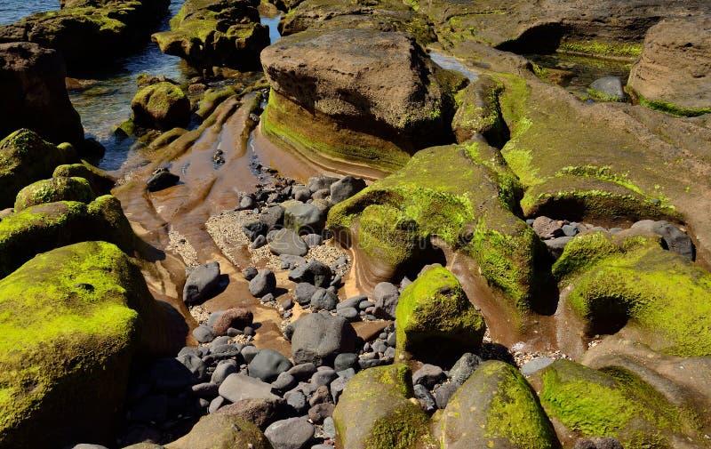 Felsen von eigenartigen Formen bei Ebbe stockfoto