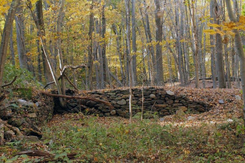 Felsen-Wand in Autumn Woods in Connecticut lizenzfreie stockfotografie