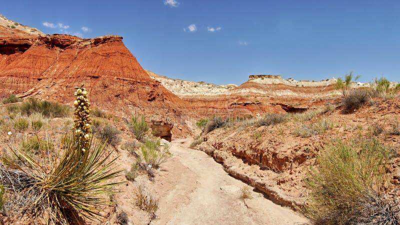 Felsenanordnung in der Wüste lizenzfreie stockfotografie
