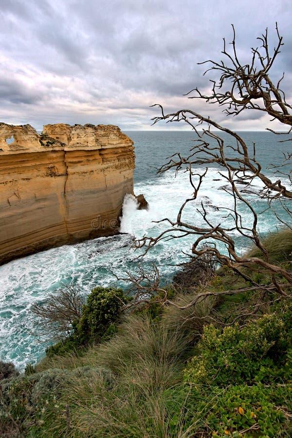 Felsenanordnungen an der Küstenlinie, große Ozean-Straße lizenzfreies stockfoto