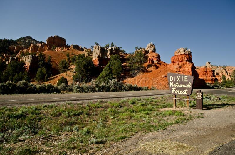 Felsenanordnungen im Dixie staatlichen Wald lizenzfreie stockfotografie