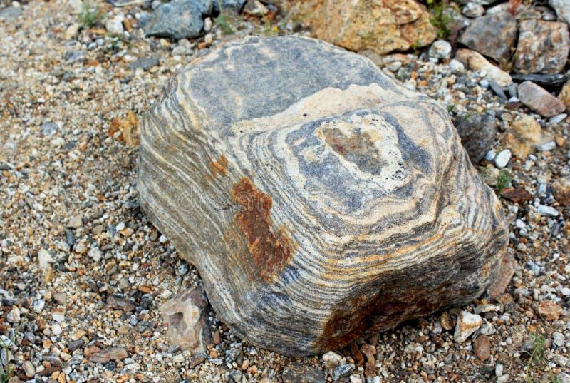 Felsenbeschaffenheit, Wüsten-Nationalpark Anza Borrego lizenzfreie stockfotos