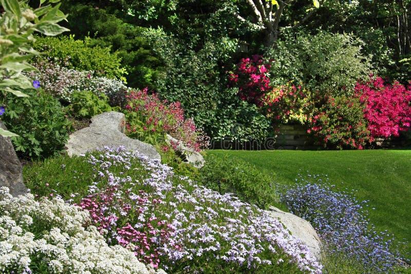 Download Felsengarten stockbild. Bild von horizontal, yard, draußen - 17689405