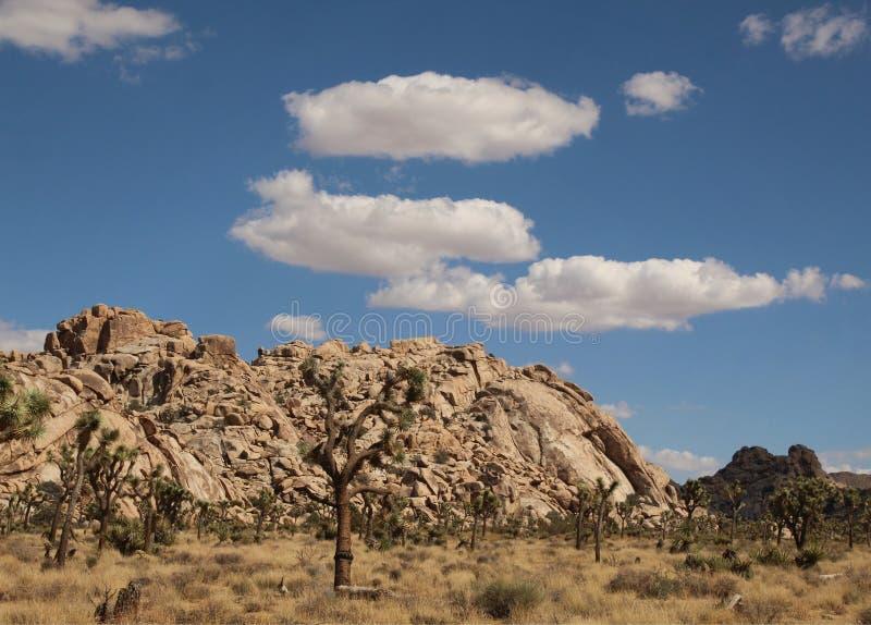 Felsformationen unter einem schönen Himmel bei Joshua Tree National Park, Kalifornien stockfoto