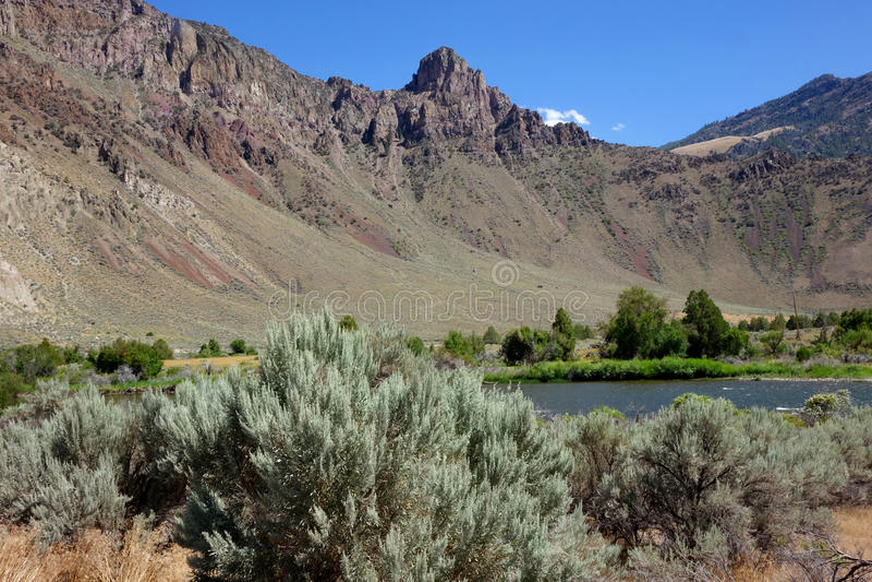 Felsig, Salmon River Canyon - Idaho stockbild